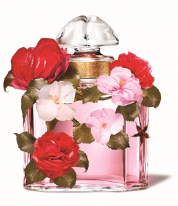 Bloom of Roses Fragrance